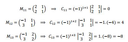 menor de una matriz y cofactor de una matriz